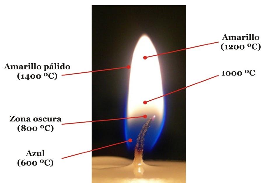 llama01-1