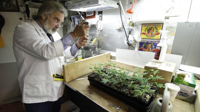 The-Future-Of-Medical-Marijuana-Research