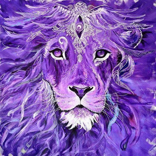 lion violet